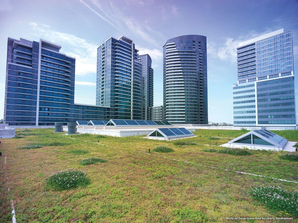 World on Yonge Green Roof by Liberty Development