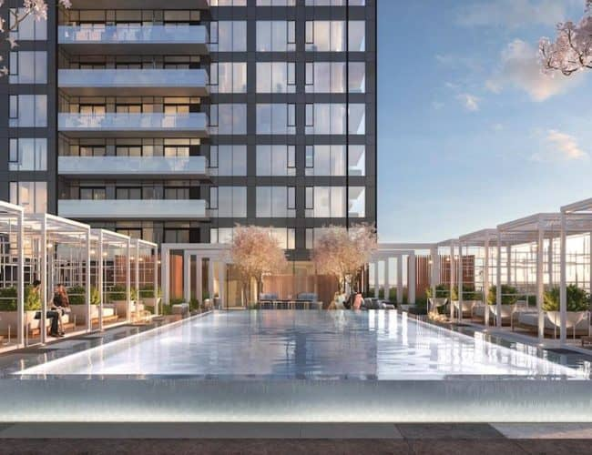 Rodeo Drive Condos - Rooftop Terrace Pool - Interior Render