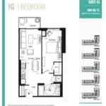 Suite 1G