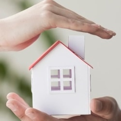 small home in hands